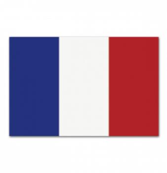 Hablar Francés – Un nuevo mundo de oportunidades laborales
