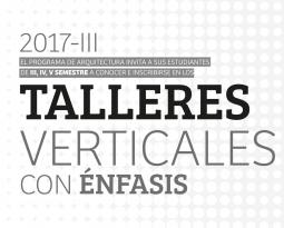 TALLERES VERTICALES CON ÉNFASIS