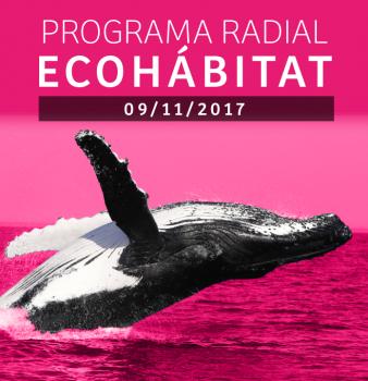 Programa radial Ecohábitat – Noviembre 09