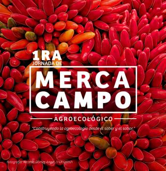 1ra Jornada de Mercacampo – Agroecológoco