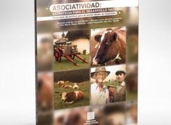 ASOCIATIVIDAD: ESTRATEGIA PARA EL DESARROLLO NACIONAL