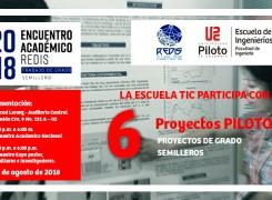 Proyectos Piloto Presentes en REDIS