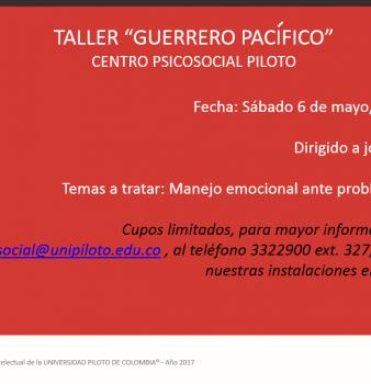 Taller. Guerrero pacífico. Centro Psicosocial Piloto.
