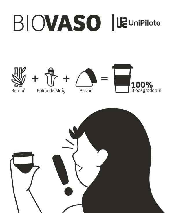 biovaso2web