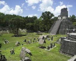 Proyecto Territorios Culturales – México D.F.