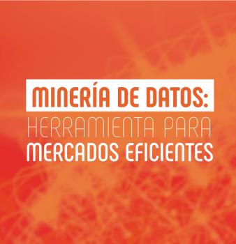 Minería de Datos: herramienta para mercados eficientes