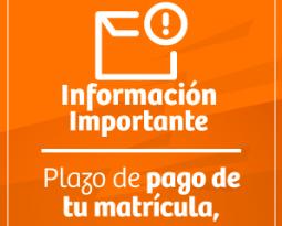 Información importante – plazo de pago de tu matrícula